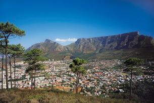 Cape townの写真素材 [FYI03761770]