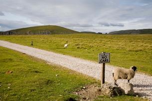 Looking north on path near Malham Tarn, Yorkshire Dales National Park, North Yorkshireの写真素材 [FYI03761779]