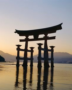 Great Torii, Itsukushima Shrine, Akini Miyajma, Japanの写真素材 [FYI03761785]