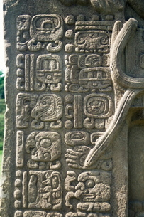 Mayan stela J, dating from 756 AD, Quirigua, Guatemalaの写真素材 [FYI03761828]