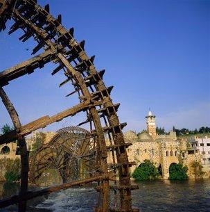 Waterwheels (norias) on Orontes River, Mosque al Nuri on far bank, Hama, Syria, Middle Eastの写真素材 [FYI03761849]