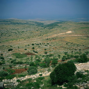Aerial view over the Afrin Valley with the Plain of Amuq beyond, seen from the church of St. Simeon,の写真素材 [FYI03761851]
