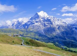View from Grindelwald-Frist to Wetterhorn, Bernese Oberland, Swiss Alpsの写真素材 [FYI03761949]
