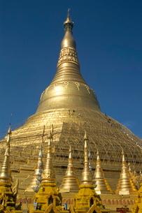 Workers on bamboo scaffolding applying fresh gold leaf to the Shwedagon Pagodaの写真素材 [FYI03762015]