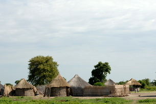 Traditional village, north west Botswanaの写真素材 [FYI03762244]