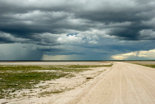 Sand road and heavy shower, Etosha National Park, Namibiaの写真素材 [FYI03762251]