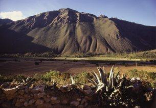 Inca Trail, Peruの写真素材 [FYI03762599]