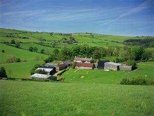 Farm near Clun, Shropshireの写真素材 [FYI03762615]