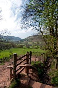 Footpath at Llanthony, Monmouthshire, Walesの写真素材 [FYI03762642]
