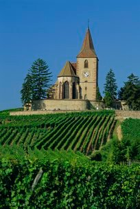 Church and vineyards, Hunawihr, Alsaceの写真素材 [FYI03762741]