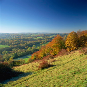 View from North Downs, Dorking, Surreyの写真素材 [FYI03762782]