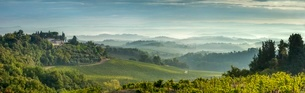 Early morning panoramic view of misty hills, near San Gimignano, Tuscanyの写真素材 [FYI03762864]