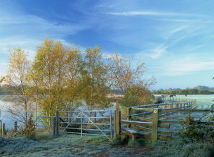 Footpath and stile near Horseshoe Lake on a frosty morning in autumn, Sandhurst, Berkshireの写真素材 [FYI03762948]