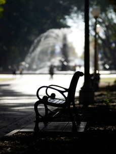 Hyde Park, Sydney, New South Walesの写真素材 [FYI03763011]