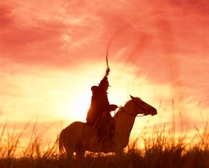 Profile of a stockman on a horse against the sunset, Queenslandの写真素材 [FYI03763058]