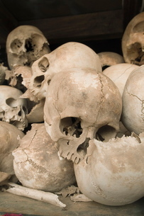 Some of the 9000 skulls, The Killing Fields, Choeung Ek, Phnom Penh, Cambodia, Indochina, Southeastの写真素材 [FYI03763064]