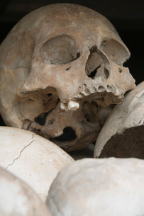 Some of the 9000 skulls, The Killing Fields, Choeung Ek, Phnom Penh, Cambodia, Indochina, Southeastの写真素材 [FYI03763066]