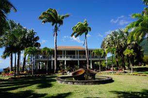 Nevis Botanical Garden, Nevis, St. Kitts and Nevis, Leeward Islands, Caribbeanの写真素材 [FYI03763747]