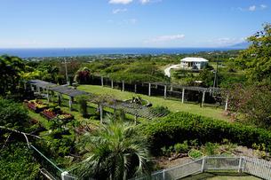 Nevis Botanical Garden, Nevis, St. Kitts and Nevis, Leeward Islands, Caribbeanの写真素材 [FYI03763750]