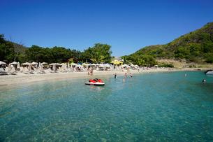Lion Rock Beach, St. Kitts, St. Kitts and Nevis, Leeward Islands, Caribbeanの写真素材 [FYI03763770]