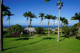 Ottleys Plantation Inn, St. Kitts, St. Kitts and Nevis, Leeward Islands, Caribbeanの写真素材 [FYI03763771]