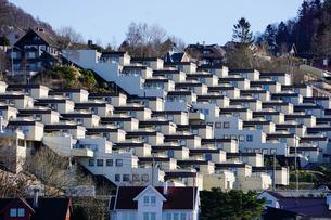 Fjord side housing development near Bergen, Hordaland, Norway, Scandinaviaの写真素材 [FYI03763864]