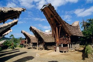 Typical houses and granaries, Toraja area, Sulawesi, Indonesiaの写真素材 [FYI03763960]
