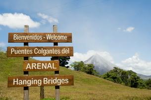 Hanging Bridges, a walk through the rainforest, Arenal, Costa Ricaの写真素材 [FYI03764090]