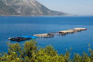Fish farm for sea bass and sea bream near Vathy (Vathi), Ithaka, Ionian Islandsの写真素材 [FYI03764152]