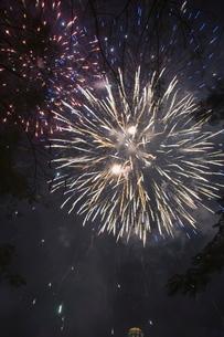 Fireworksの写真素材 [FYI03764537]