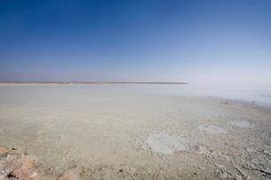 Track into Etosha Pan, Etosha National Park, Namibiaの写真素材 [FYI03764759]