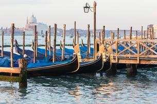Gondals moored at waterfront, Riva degli Schiavoni, with view to San Giorgio Maggiore, Venice, Venetの写真素材 [FYI03764796]