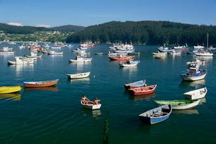 Fishing boats and headland, Ria de Cedeira, La Coruna area, Galiciaの写真素材 [FYI03764848]