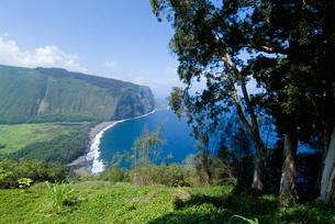 View of Waipio Valley, Island of Hawaii (Big Island), Hawaii'の写真素材 [FYI03764896]