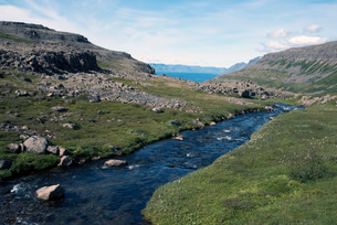 River flowing into the fjord, in the West Fjords, Icelandの写真素材 [FYI03765037]