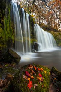 Sqwd Ddwli Waterfall, near Pontneddfechan, Afon Pyrddin, Powys, Brecon Beacons National Park, Walesの写真素材 [FYI03765130]