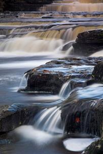 Lower Aysgarth Falls near Hawes, Wensleydale, Yorkshire Dales National Park, Yorkshireの写真素材 [FYI03765228]