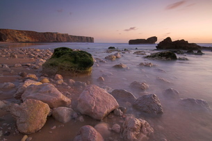 Long exposure of incoming tide on Tonal beach at sunset near Sagres, Algarveの写真素材 [FYI03765232]
