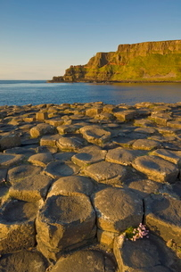 Hexagonal basalt columns of the Giant's Causeway and Area of Special Scientific Interest, near Bushmの写真素材 [FYI03765290]