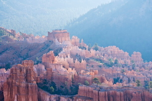 Backlit sandstone hoodoos in Bryce Amphitheater, Bryce Canyon National Parkの写真素材 [FYI03765379]