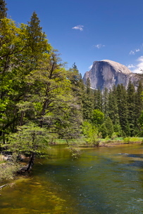 Half Dome granite monolith, Merced River, Yosemite Valley, Yosemite National Park, Sierra Nevadaの写真素材 [FYI03765395]