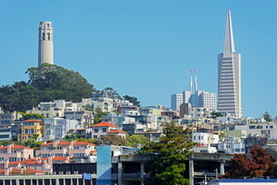 Coit Tower stands on top of Telegraph Hill, San Franciscoの写真素材 [FYI03765539]