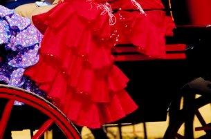 Detail of festival goer's dress, Feria de Sevilla, Sevilla, Andaluciaの写真素材 [FYI03765668]