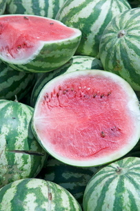Watermelons, Ed Damer village, Sudanの写真素材 [FYI03765790]