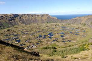 Lake in crater, Orongo, Easter Islandの写真素材 [FYI03765802]