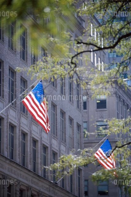 American flags, stars and stripes, flying on 5th Avenue, New York City, New York, USA'の写真素材 [FYI03766194]