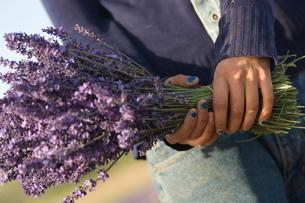 Lavender Blue Nail Girl, Luberonの写真素材 [FYI03766301]