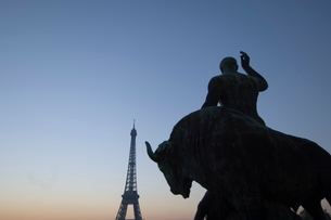 Evening Bull, Eiffel Tower, Parisの写真素材 [FYI03766407]