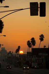 Sunrise on Sunset Boulevard, Hollywoodの写真素材 [FYI03766611]