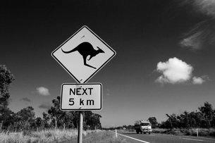 Road sign warning of kangaroos over next 5 kmの写真素材 [FYI03766734]